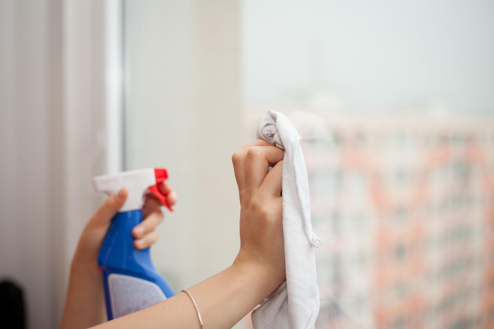 Как проверить домработницу
